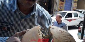 مديرية التموين تضبط جبن رومي غير صالح للاستهلاك الآدمي بالإسكندرية