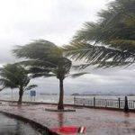 نشرة الطقس الإسبوعية من اليوم الأحد 8 إلى الجمعة 13 ديسمبر في جميع المحافظات