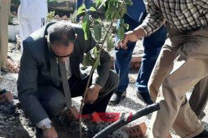 وكيل التعليم بدمياط يغرس أول شجرة مثمرة ضمن فعاليات مبادرة زرعة ولدنا علشان بلدنا