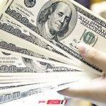 سعر الدولار اليوم في مصر الخميس 14\11\2019