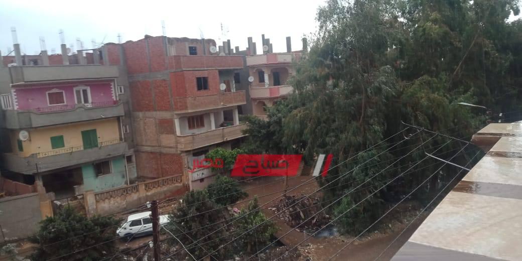 أمطار ورياح في محافظة القليوبية
