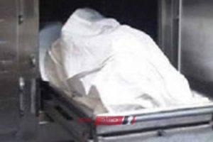 القبض على متهمين خطفوا حقيبة يد سيدة مما تسبب فى سقوطها ووفاتها في الإسكندرية