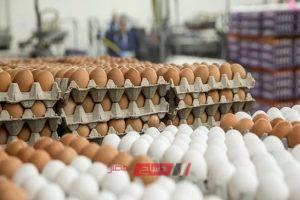 كرتونة البيض تسجل 34.5 جنيه في الجيزة