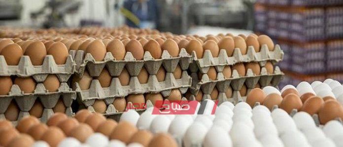 كرتونة البيض تتراجع جنيهين للأبيض و جنيه للبلدي اليوم