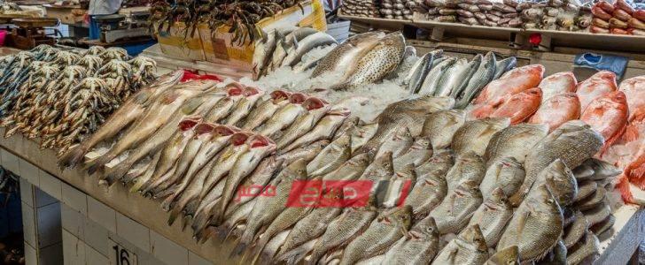تعرف على أسعار 20 نوعًا من الأسماك في أسواق المحافظات