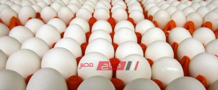 تعرف على أسعار البيض بالمحافظات اليوم
