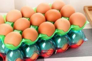 تباين أسعار البيض في المحافظات والبيضة بـ 150 قرشًا في البحيرة