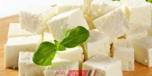 الجبن - منتجات الألبان