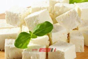 ننشر أسعار الجبن الأبيض في أسواق المحافظات