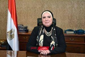 وزيرة الصناعة تبحث تطورات برنامج الشراكة مع اليونيدو