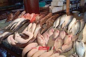 ننشر أسعار 22 نوعًا من الأسماك في سوق الجملة اليوم