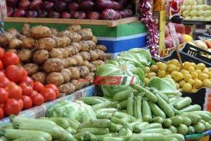 ننشر أسعار 23 نوعًا من الخضار في أسواق المحافظات