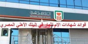 فوائد شهادات الإستثمار في البنك الأهلي المصري