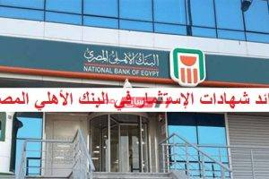 بالأرقام التقريبية فوائد شهادات الإستثمار في البنك الأهلي المصري