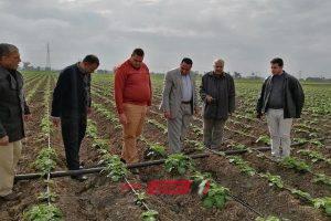 وكيل الزراعة في دمياط يشدد على ضرورة تكثيف أعمال المتابعة والمرور الميداني