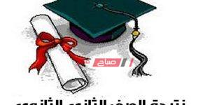 مصدر من وزارة التربية والتعليم يعلن موعد ظهور نتيجة الصف الثاني الثانوي - تعرف عليه