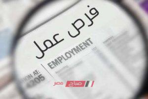 مؤسسات حكومية وخاصة وبنوك مختلفة تعلن عن فرص عمل – الشروط وآخر موعد للتقديم