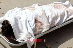 وفاة طفل صعقا بالكهرباء في نجع حمادي