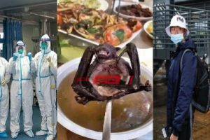 بسبب تناول لحوم الكلاب والأفاعي والخفافيش – من أين جاء فيروس كورونا الصين ؟