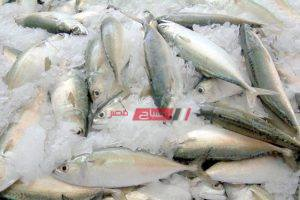 الموزة بـ 50 جنيهًا في أسواق الأسماك في المحافظات