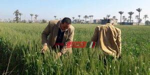 جولة وكيل الزراعة