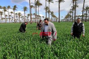 وكيل الزراعة بدمياط يشدد على عدم غلق مخازن الجمعيات والتيسير على المزارعين