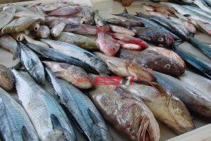 10 جنيهات سعر سمك حدادي في سوق العبور اليوم