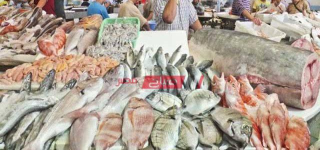تحديث أسعار الأسماك في سوق العبور اليوم الإثنين