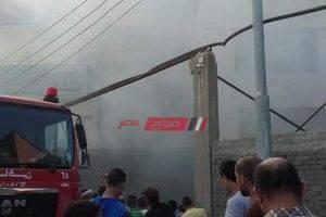 بالصور اندلاع حريق هائل في مزرعة دواجن بدمياط