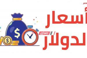سعر الدولار الأمريكي اليوم الجمعة 29_5_2020 في مصر