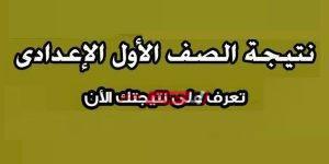 نتيجة الصف الأول الإعدادي الترم الثاني 2020 محافظة الإسكندرية