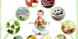 أطعمة-مفيدة-لدماغ-الطفل