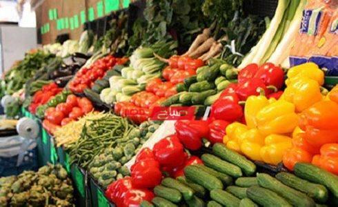 تحديث أسعار الخضار في سوق العبور اليوم الإثنين