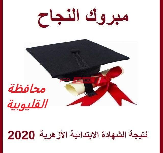 بالاسم ورقم الجلوس نتيجة الشهادة الابتدائية الأزهرية محافظة القليوبية الترم الثاني 2020