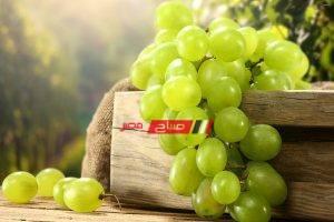 فوائد العنب علي صحة الإنسان
