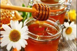 تعرف علي فوائد عسل النحل للحماية من الأمراض