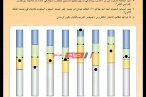 نتيجة 2 ثانوي الترم الثاني 2020 وزارة التربية والتعليم