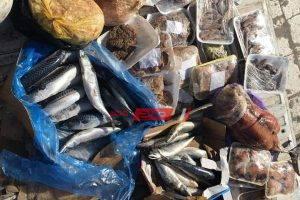 ضبط 81 كيلو اسماك سامة ولحوم فاسدة في حملة مكبرة على أسواق مدينة رأس البر بدمياط