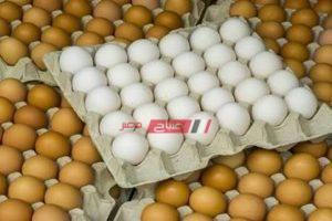 انخفاض أسعار البيض البلدي في أسواق المحافظات