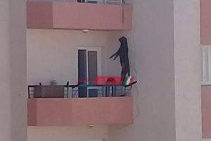 القبض على شخص قام بتعذيب كلب بشرفة شقته فى الإسكندرية