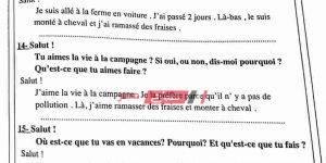 مراجعة ليلة الامتحان فرنساوى