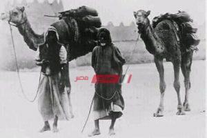 ايهما نجح فيه العرب نشر الاسلام ام تعريب الشعوب