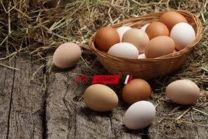 تفسير حلم البيض في المنام للمتزوجة والعزباء والحامل