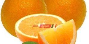 زراعة البرتقال في مصر